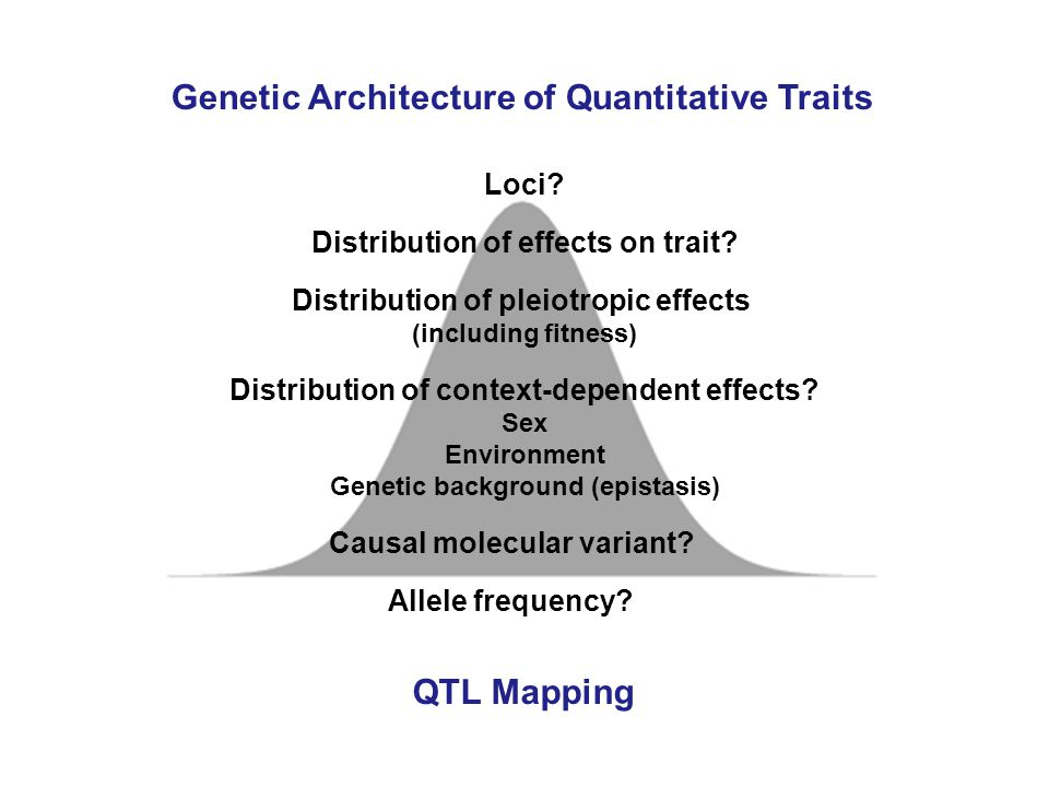 Genetic Architecture of Quantitative Traits Loci. Distribution of effects on trait.