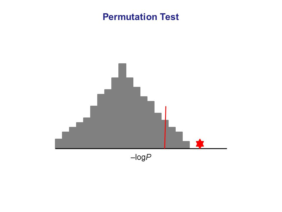 –logP Permutation Test