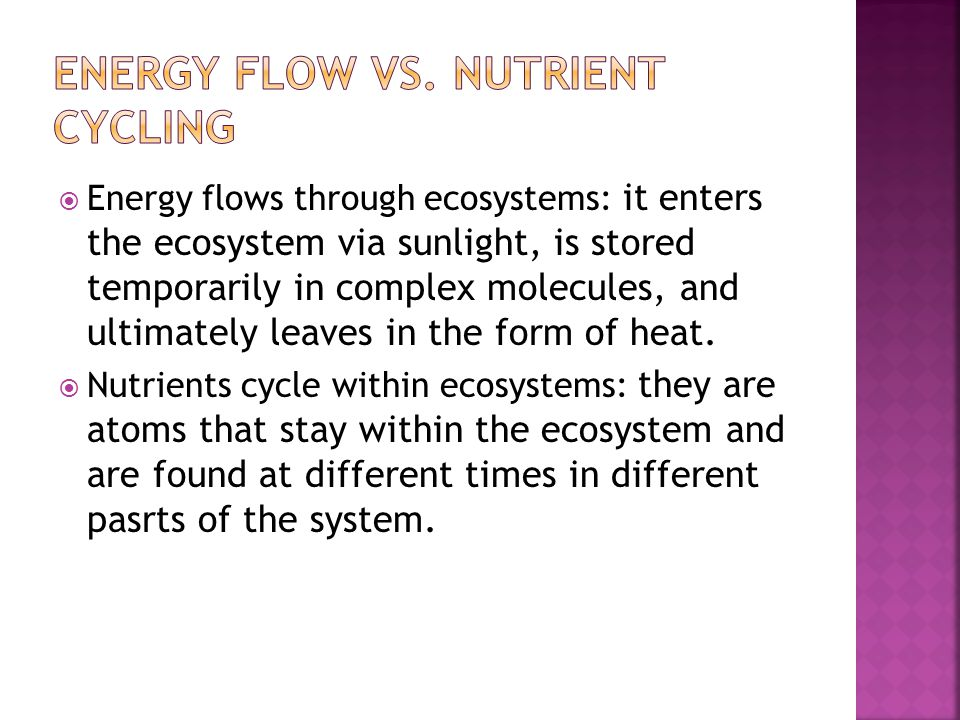  Energy flows through ecosystems: it enters the ecosystem via sunlight, is stored temporarily in complex molecules, and ultimately leaves in the form