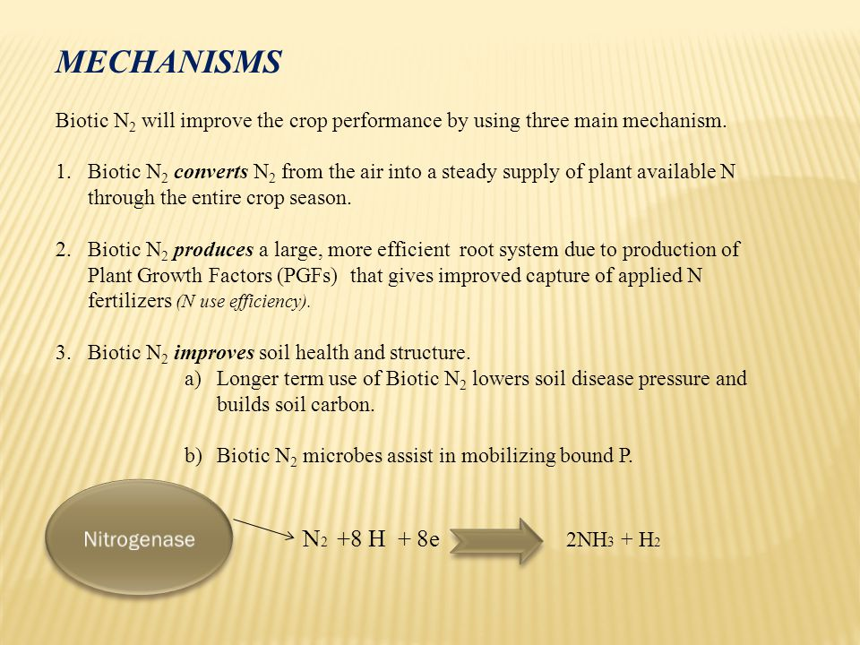 MECHANISMS Biotic N 2 will improve the crop performance by using three main mechanism.