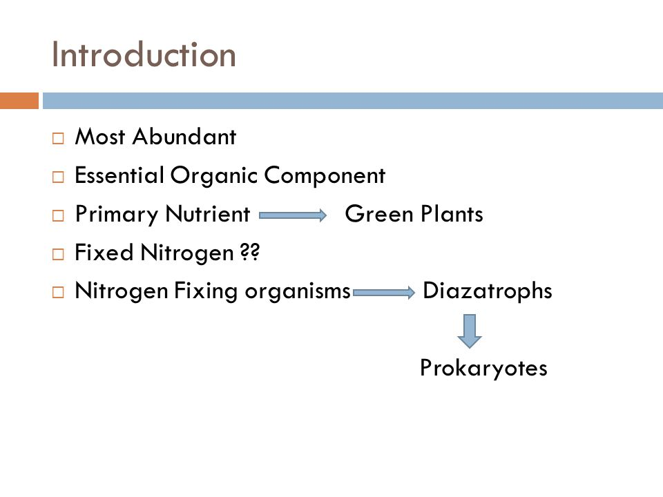 Introduction  Most Abundant  Essential Organic Component  Primary Nutrient Green Plants  Fixed Nitrogen .