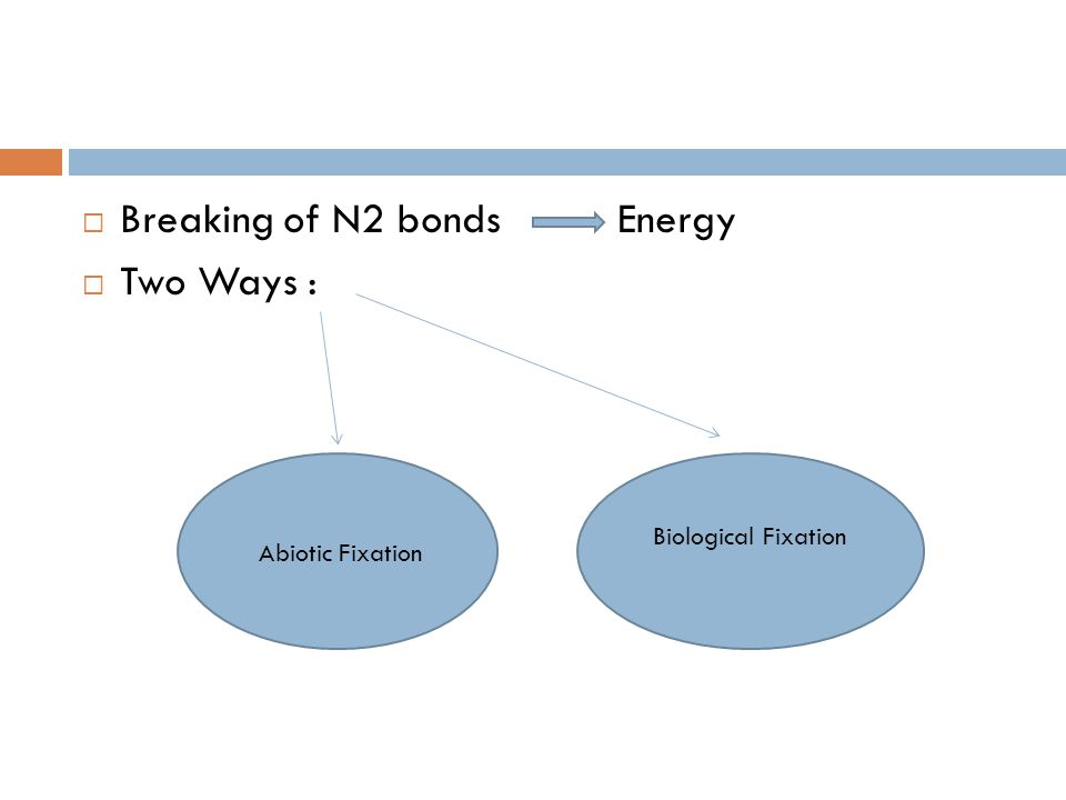  Breaking of N2 bonds Energy  Two Ways : Abiotic Fixation Biological Fixation