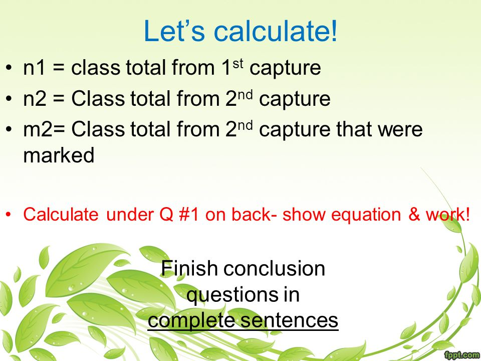 Let's calculate.