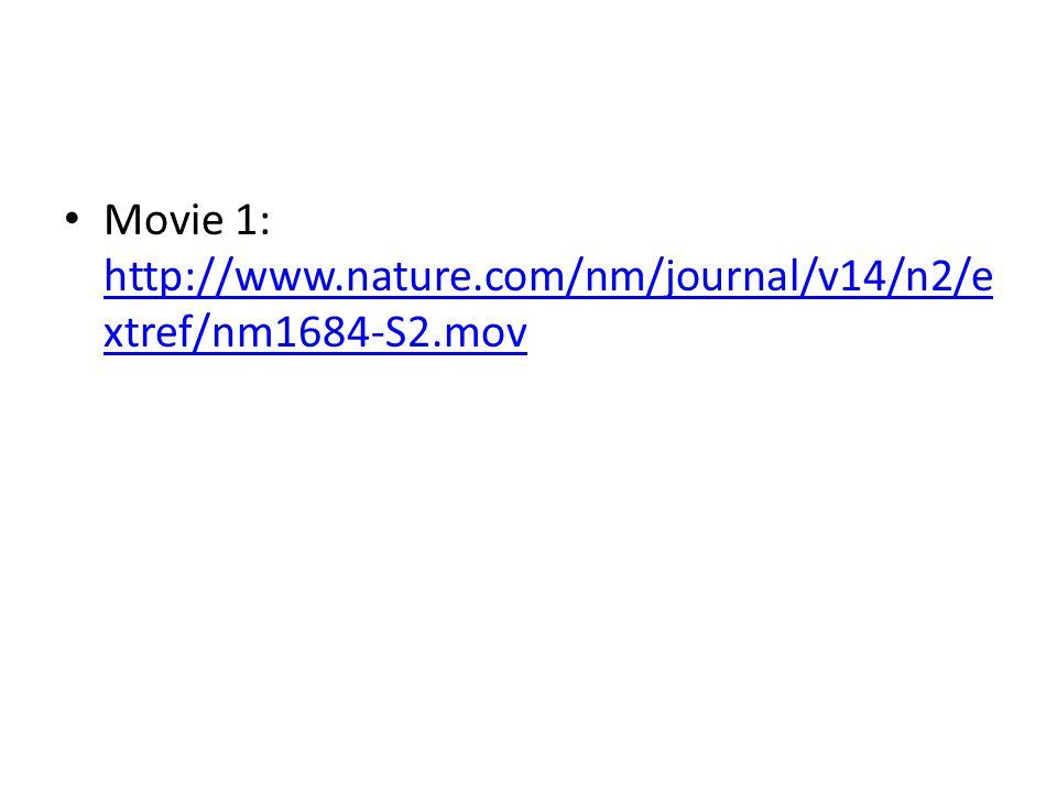 Movie 1: http://www.nature.com/nm/journal/v14/n2/e xtref/nm1684-S2.mov http://www.nature.com/nm/journal/v14/n2/e xtref/nm1684-S2.mov