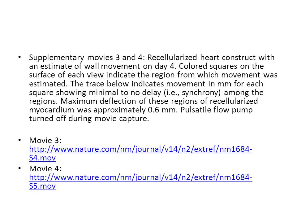 Supplementary movies 3 and 4: Recellularized heart construct with an estimate of wall movement on day 4.