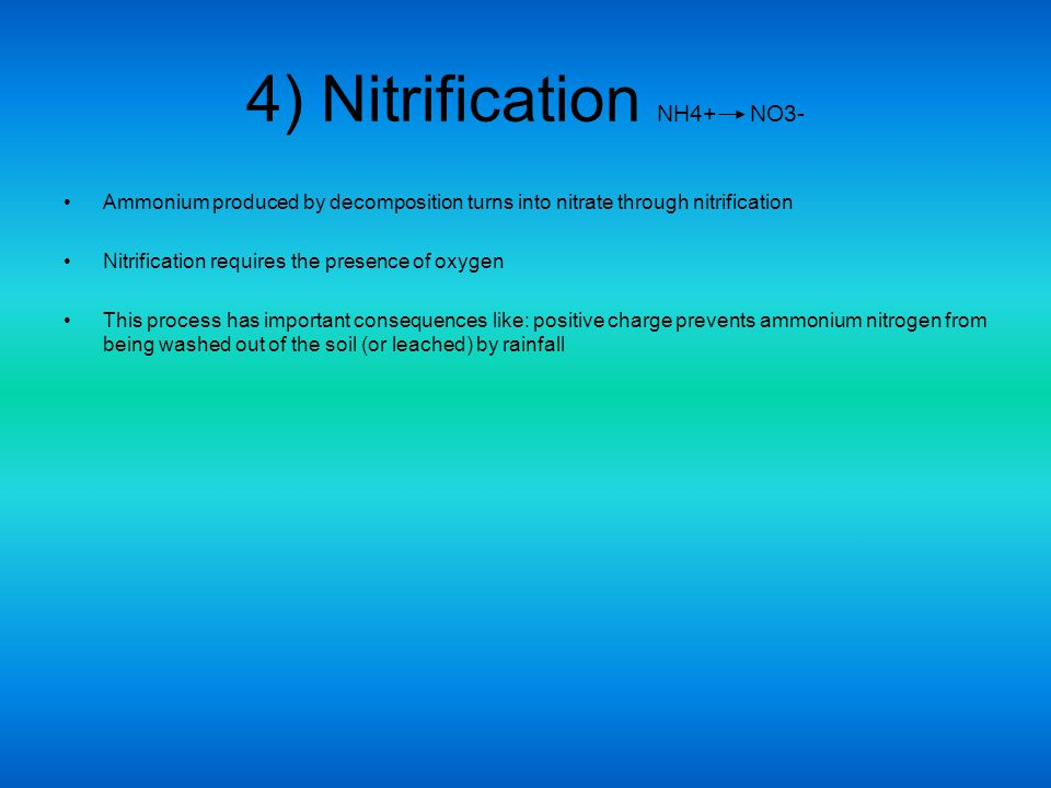 4) Nitrification NH4+ NO3- Ammonium produced by decomposition turns into nitrate through nitrification Nitrification requires the presence of oxygen T