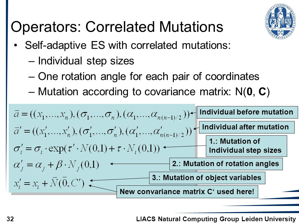 LIACS Natural Computing Group Leiden University32 Operators: Correlated Mutations Individual before mutationIndividual after mutation1.: Mutation of Individual step sizes 2.: Mutation of rotation angles New convariance matrix C' used here.