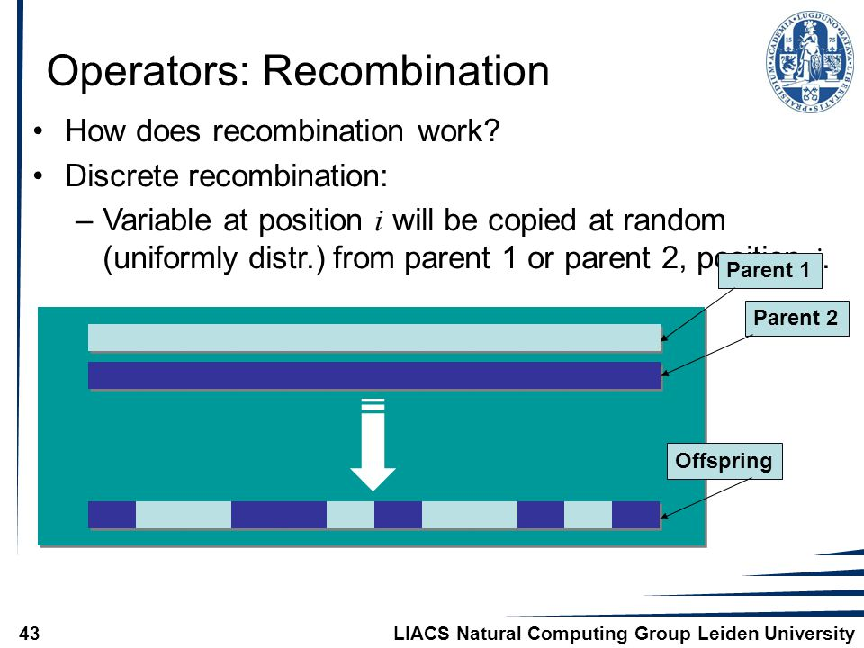 LIACS Natural Computing Group Leiden University43 Operators: Recombination How does recombination work.