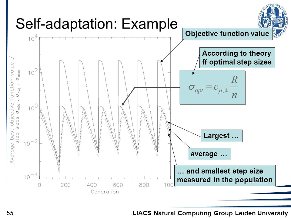 LIACS Natural Computing Group Leiden University55 Self-adaptation: Example Objective function value … and smallest step size measured in the population average … Largest … According to theory ff optimal step sizes