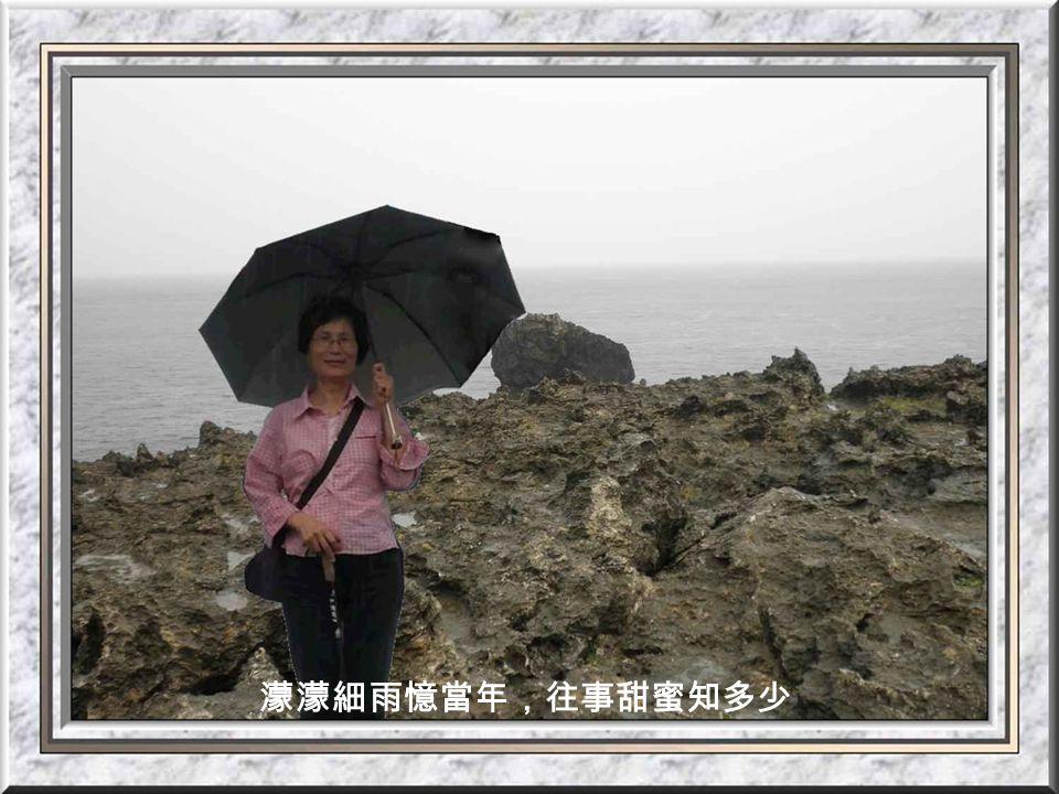 龍坑礁岩與海景