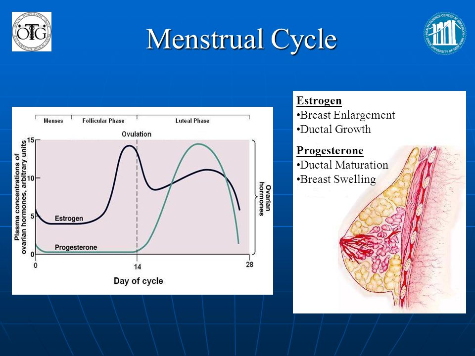 Clinical Research Badwe et al: First study demonstrating correlation between long term survival and phase of menstruation.