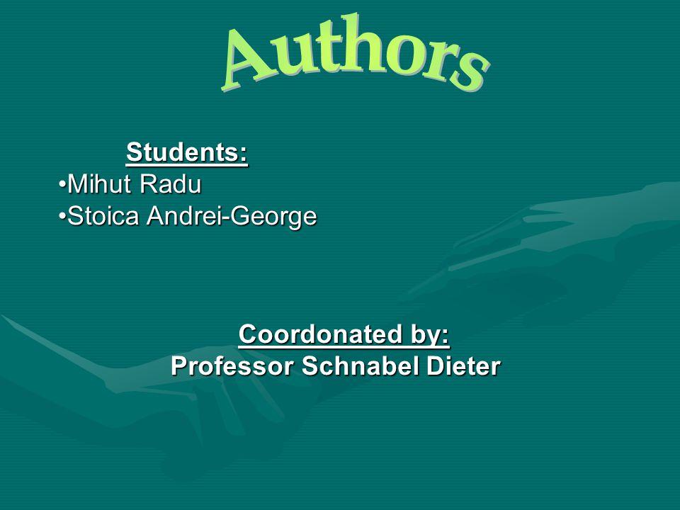 Students: Mihut RaduMihut Radu Stoica Andrei-GeorgeStoica Andrei-George Coordonated by: Professor Schnabel Dieter