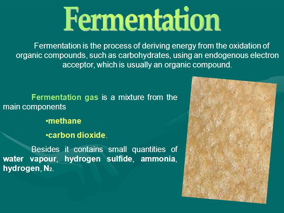 Fermentation is the process of deriving energy from the oxidation of organic compounds, such as carbohydrates, using an endogenous electron acceptor,