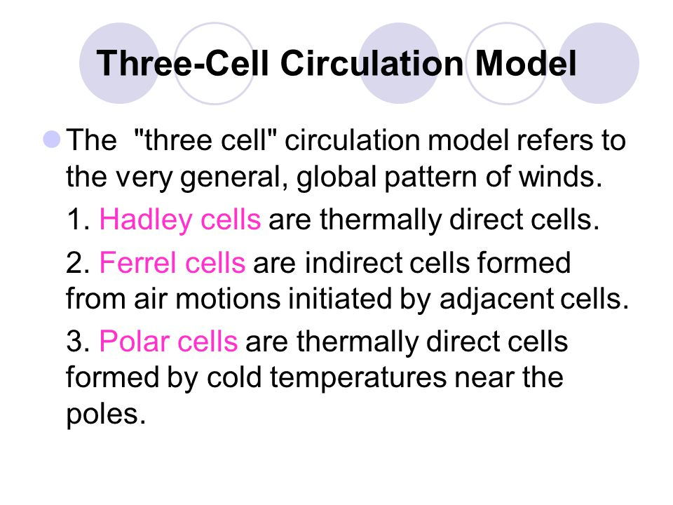 Three-Cell Circulation Model The