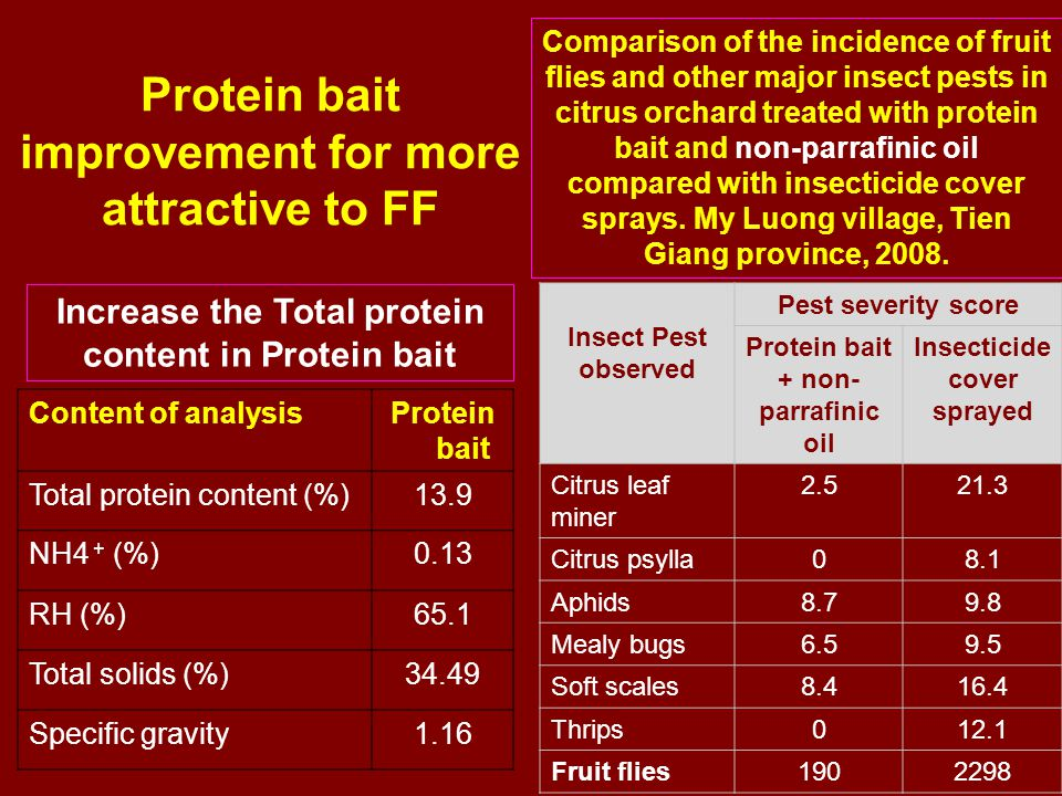 Protein bait improvement for more attractive to FF Content of analysisProtein bait Total protein content (%)13.9 NH4 + (%)0.13 RH (%)65.1 Total solids (%)34.49 Specific gravity1.16 Insect Pest observed Pest severity score Protein bait + non- parrafinic oil Insecticide cover sprayed Citrus leaf miner Citrus psylla08.1 Aphids Mealy bugs Soft scales Thrips012.1 Fruit flies Increase the Total protein content in Protein bait Comparison of the incidence of fruit flies and other major insect pests in citrus orchard treated with protein bait and non-parrafinic oil compared with insecticide cover sprays.
