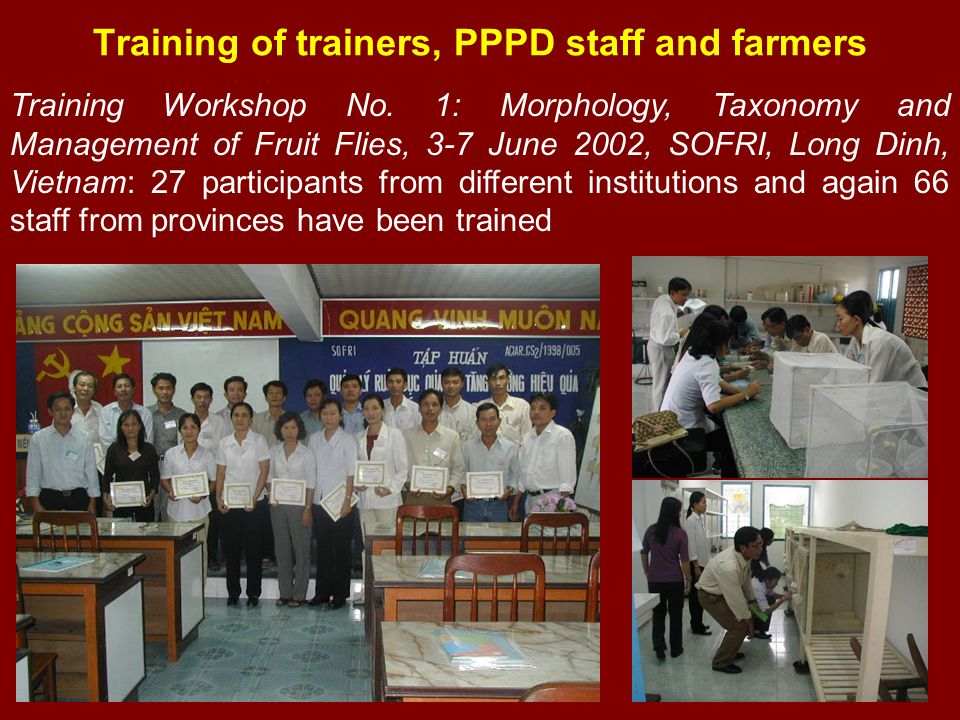 Training of trainers, PPPD staff and farmers Training Workshop No. 1: Morphology, Taxonomy and Management of Fruit Flies, 3-7 June 2002, SOFRI, Long D
