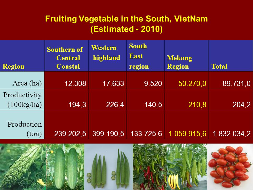 Fruiting Vegetable in the South, VietNam (Estimated ) Region Southern of Central Coastal Western highland South East region Mekong RegionTotal Area (ha) , ,0 Productivity (100kg/ha) 194,3226,4140,5210,8204,2 Production (ton) , , , , ,2