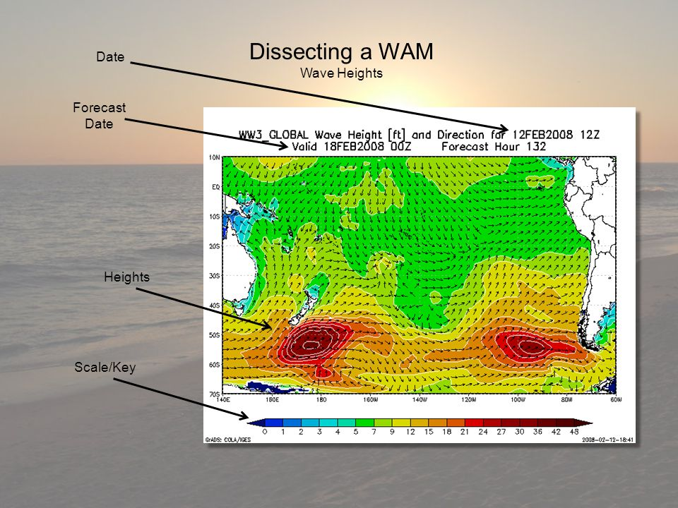Dissecting a WAM Wave Heights Heights Scale/Key Date Forecast Date