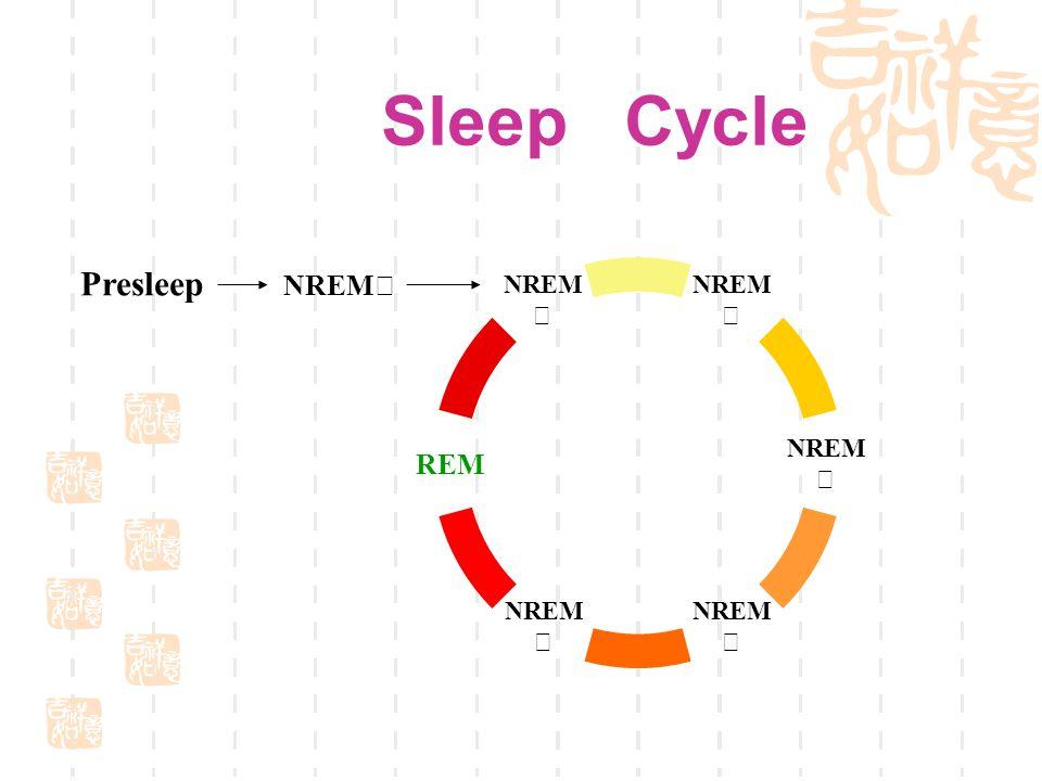 Sleep Cycle NREM Ⅲ NREM Ⅳ NREM Ⅲ NREM Ⅱ REM NREM Ⅱ Presleep NREM Ⅰ