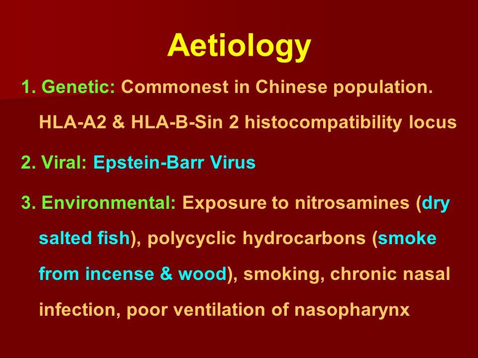 Nasopharyngoscopy