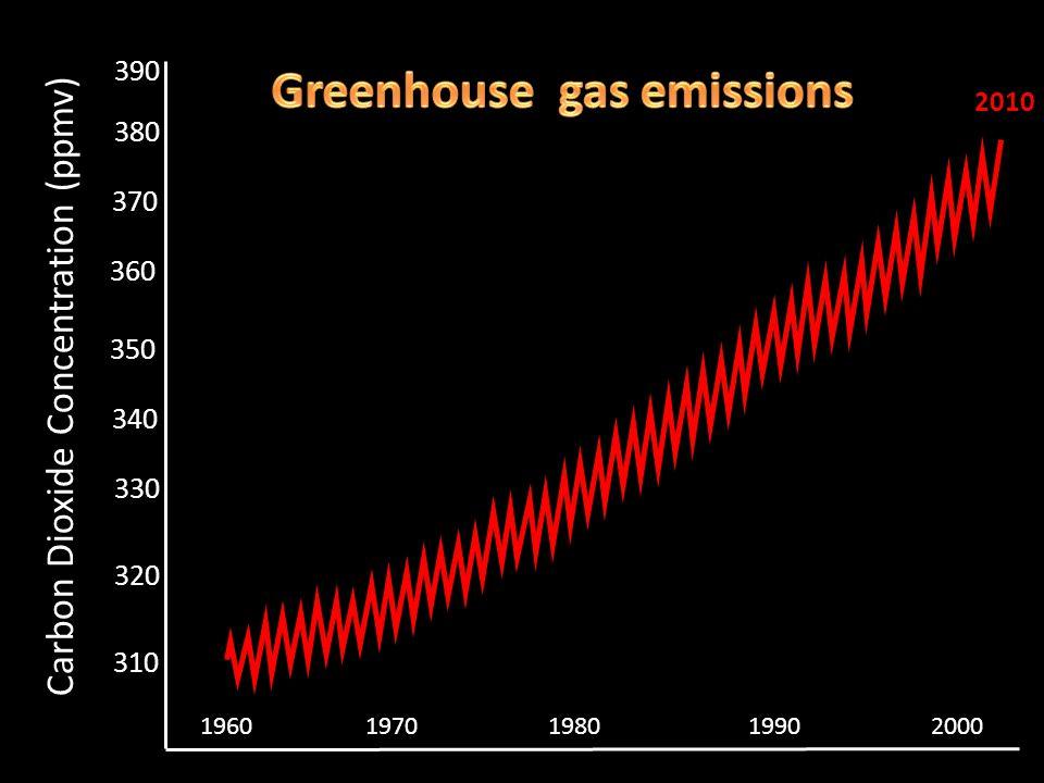 310 320 340 360 370 380 Carbon Dioxide Concentration (ppmv) 2007 330 350 390 19602000197019801990 2010