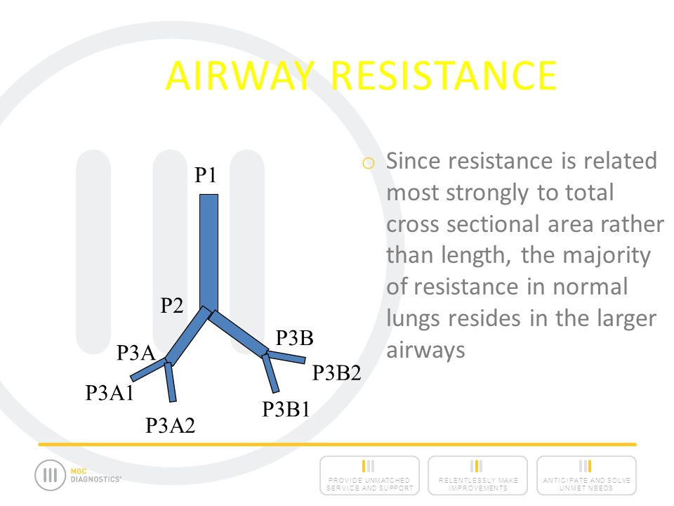 ANTICIPATE AND SOLVE UNMET NEEDS RELENTLESSLY MAKE IMPROVEMENTS PROVIDE UNMATCHED SERVICE AND SUPPORT AIRWAY RESISTANCE o Since resistance is related most strongly to total cross sectional area rather than length, the majority of resistance in normal lungs resides in the larger airways P1 P2 P3B P3A P3A1 P3A2 P3B2 P3B1