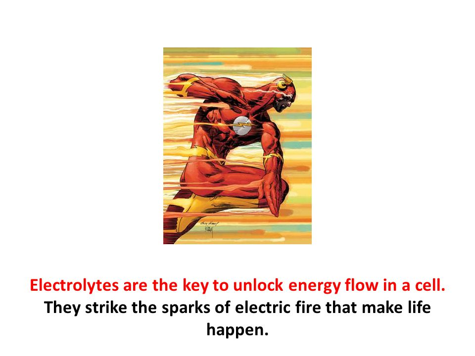 Electrolytes are the key to unlock energy flow in a cell. They strike the sparks of electric fire that make life happen.