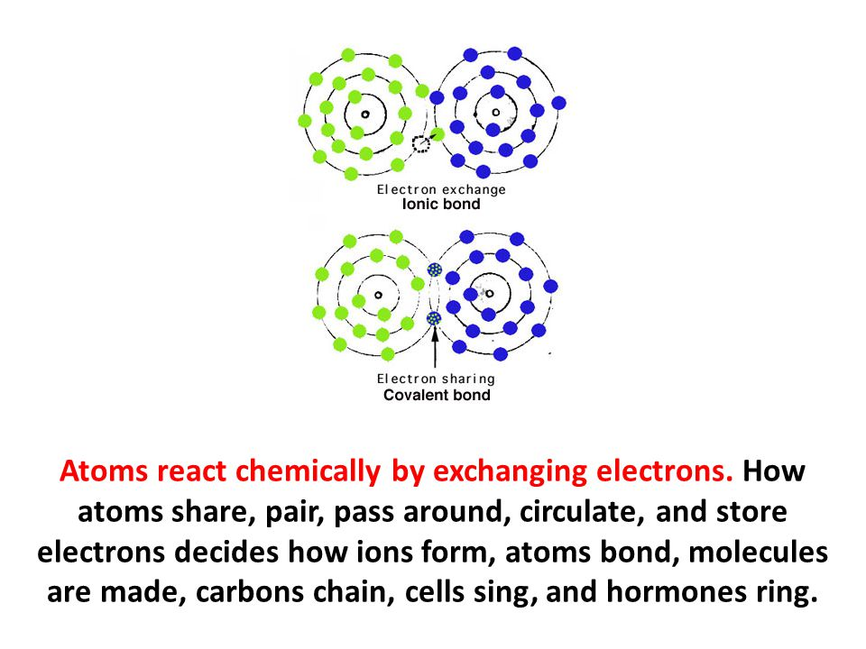Atoms react chemically by exchanging electrons. How atoms share, pair, pass around, circulate, and store electrons decides how ions form, atoms bond,