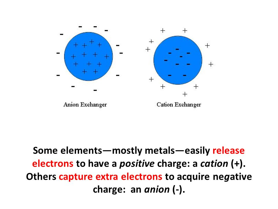 Some elements—mostly metals—easily release electrons to have a positive charge: a cation (+). Others capture extra electrons to acquire negative charg