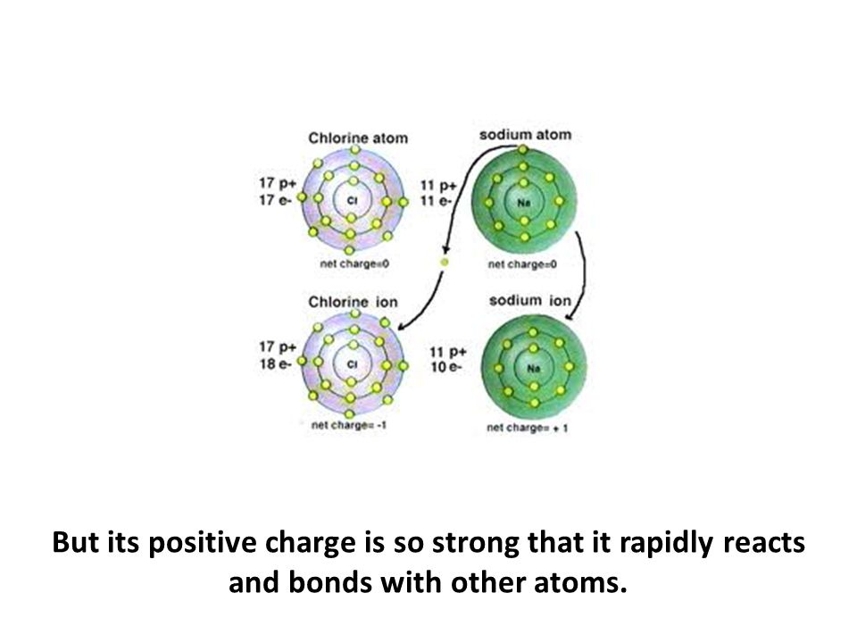 But its positive charge is so strong that it rapidly reacts and bonds with other atoms.