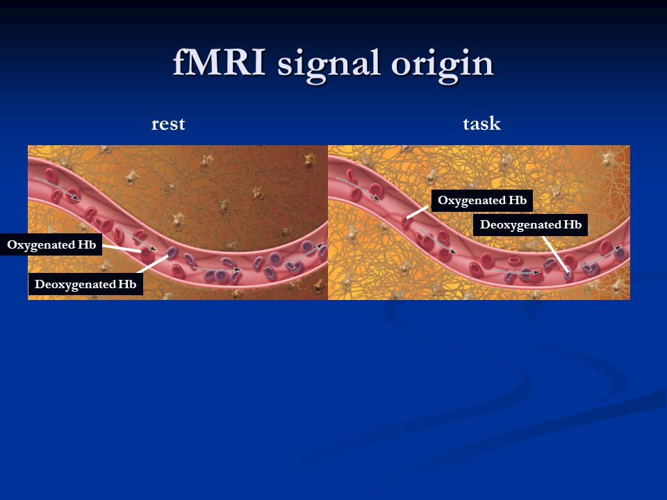 fMRI signal origin rest Oxygenated Hb Deoxygenated Hb task Oxygenated Hb Deoxygenated Hb