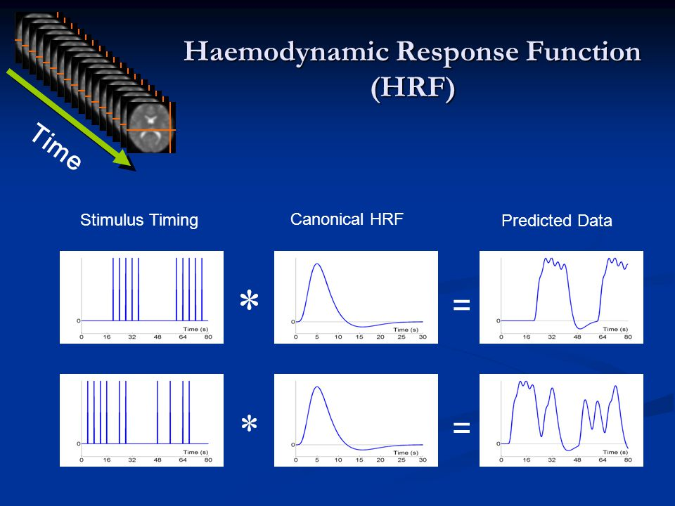 Haemodynamic Response Function (HRF) Stimulus Timing Canonical HRF Predicted Data = = Time