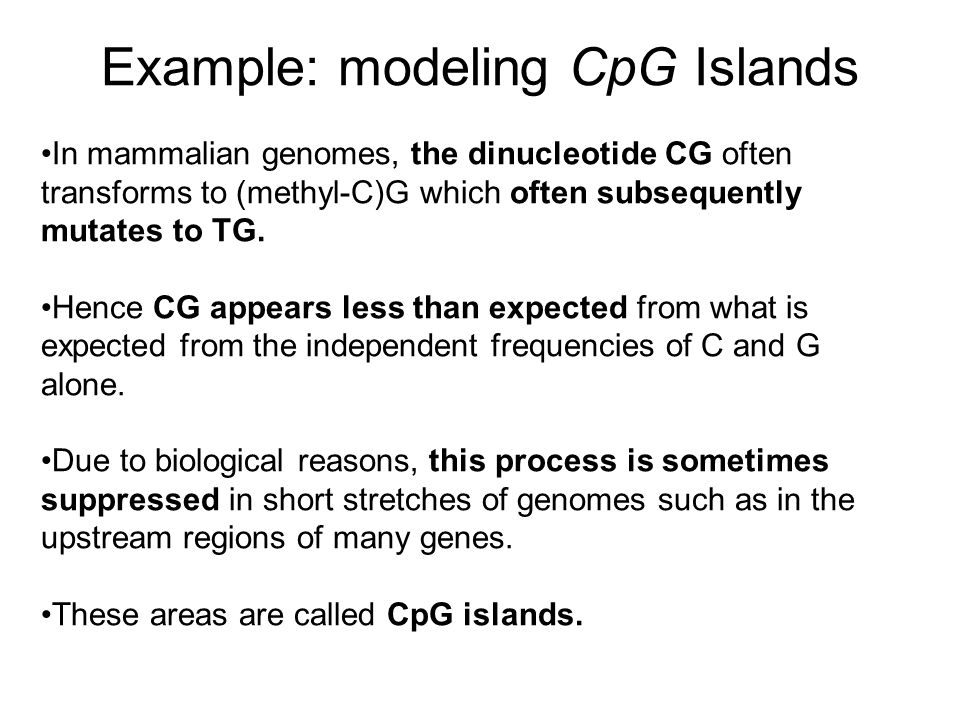 Example: modeling CpG Islands In mammalian genomes, the dinucleotide CG often transforms to (methyl-C)G which often subsequently mutates to TG. Hence