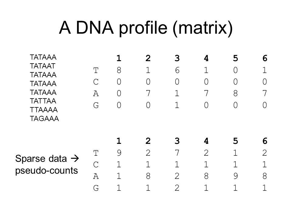A DNA profile (matrix) TATAAA TATAAT TATAAA TATTAA TTAAAA TAGAAA 1 2 3 4 5 6 T 8 1 6 1 0 1 C 0 0 0 0 0 0 A 0 7 1 7 8 7 G 0 0 1 0 0 0 1 2 3 4 5 6 T 9 2 7 2 1 2 C 1 1 1 1 1 1 A 1 8 2 8 9 8 G 1 1 2 1 1 1 Sparse data  pseudo-counts