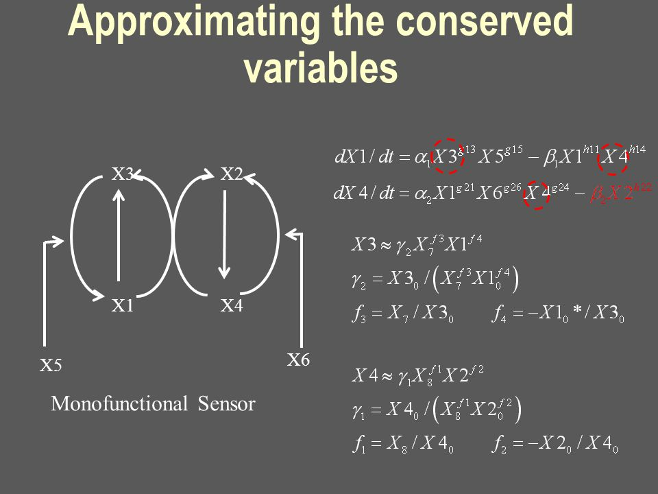 Approximating the conserved variables Monofunctional Sensor X3 X1 X2 X4 X5 X6