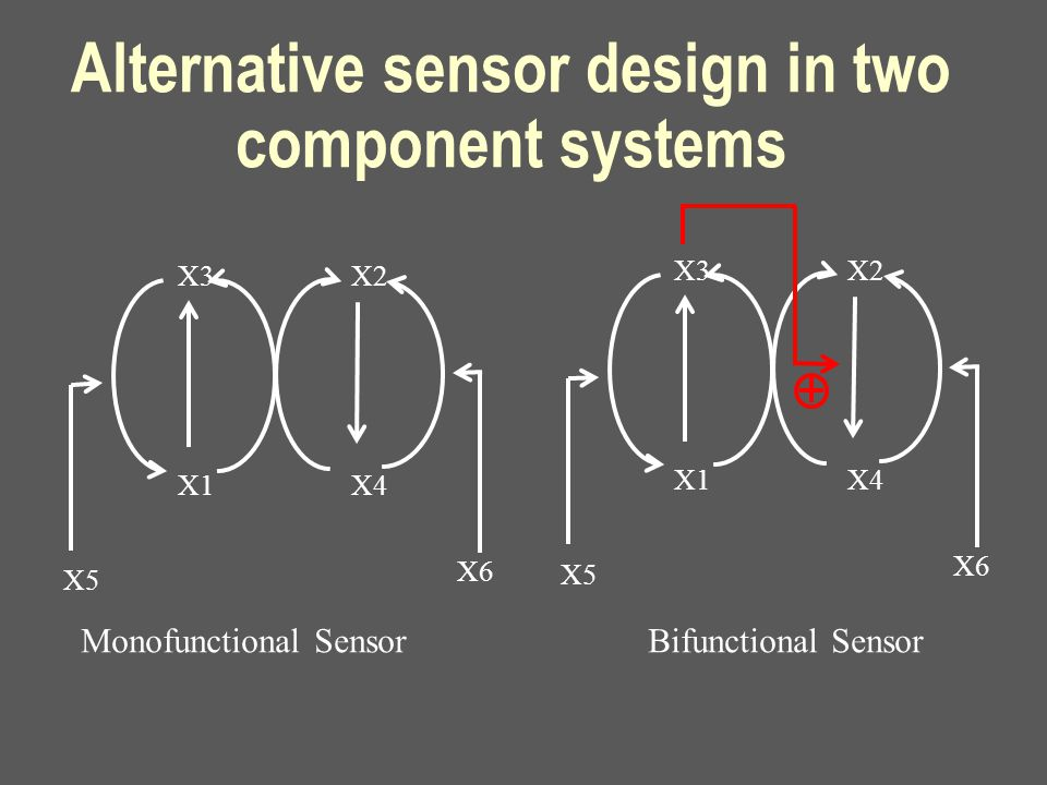 Alternative sensor design in two component systems X3 X1 X2 X4 X5 X6 Monofunctional Sensor Bifunctional Sensor X3 X1 X2 X4 X5 X6