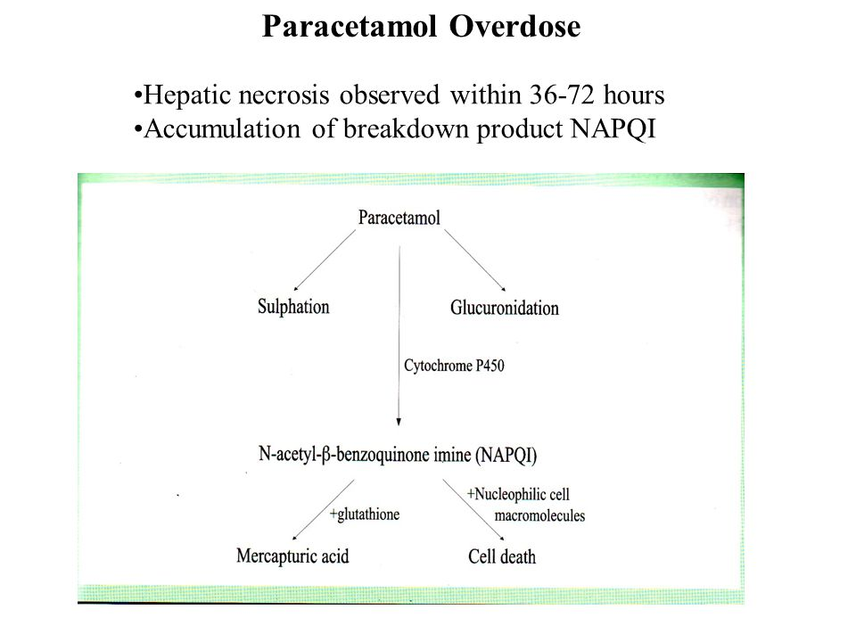 Paracetamol Overdose Hepatic necrosis observed within 36-72 hours Accumulation of breakdown product NAPQI