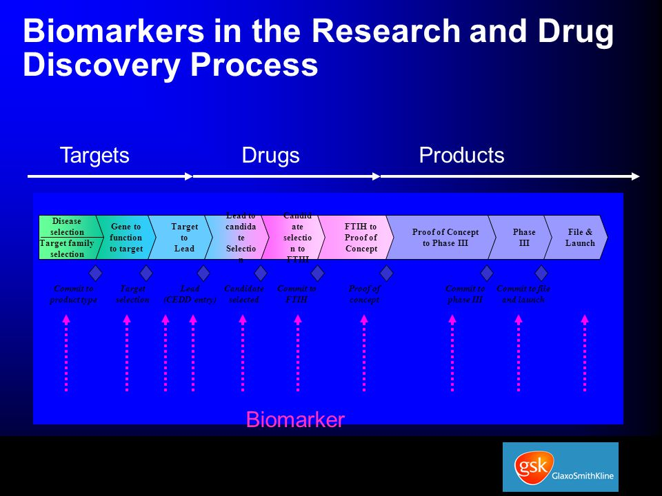 Biomarkers in the Research and Drug Discovery Process Gene to function to target Target to Lead Lead to candida te Selectio n Candid ate selectio n to FTIH FTIH to Proof of Concept Proof of Concept to Phase III Phase III File & Launch Disease selection Target family selection Target selection Lead (CEDD entry) Candidate selected Commit to FTIH Proof of concept Commit to phase III Commit to file and launch Commit to product type TargetsDrugsProducts Biomarker