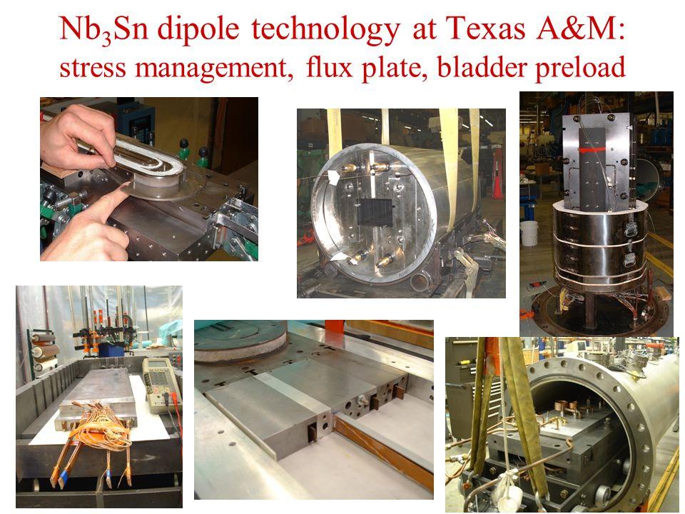 Nb 3 Sn dipole technology at Texas A&M: stress management, flux plate, bladder preload