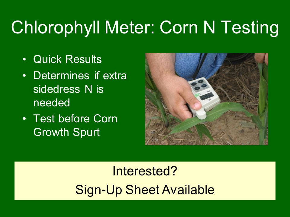 Chlorophyll Meter: Corn N Testing Quick Results Determines if extra sidedress N is needed Test before Corn Growth Spurt Interested.