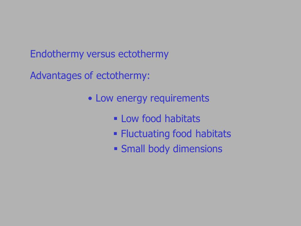 Endothermy versus ectothermy Advantages of ectothermy: Low energy requirements  Low food habitats  Fluctuating food habitats  Small body dimensions