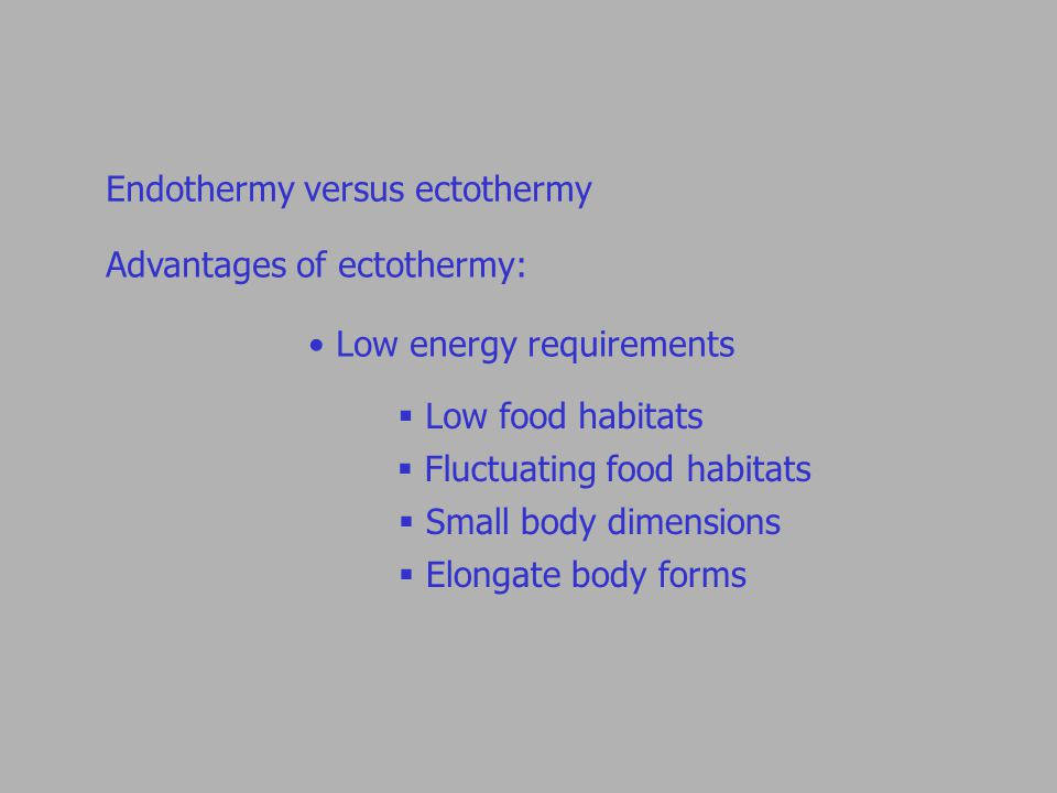 Endothermy versus ectothermy Advantages of ectothermy: Low energy requirements  Low food habitats  Fluctuating food habitats  Small body dimensions  Elongate body forms