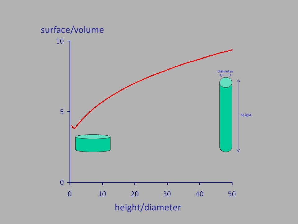 height/diameter surface/volume diameter height