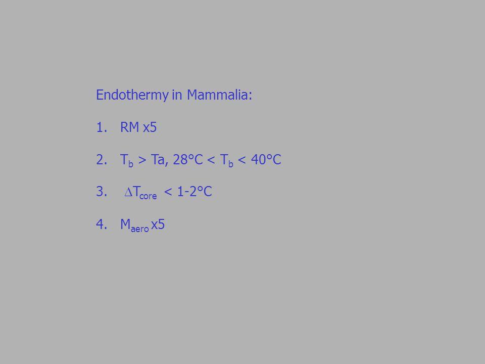 Endothermy in Mammalia: 1.RM x5 2.T b > Ta, 28°C < T b < 40°C 3.  T core < 1-2°C 4.M aero x5