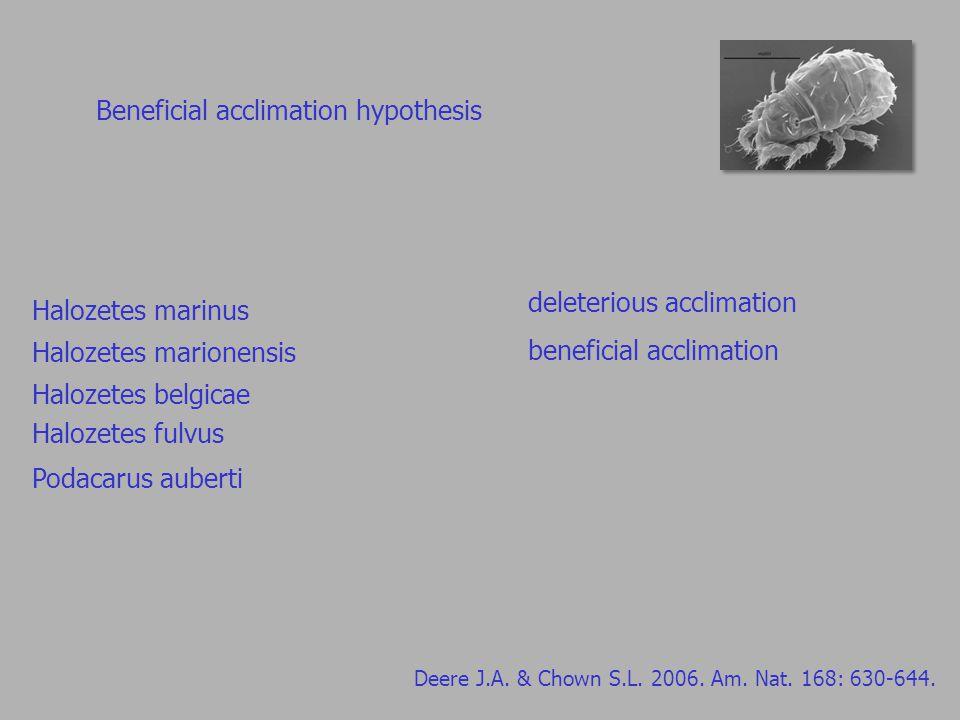 Beneficial acclimation hypothesis Deere J.A.& Chown S.L.