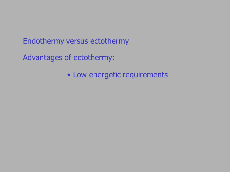 Endothermy versus ectothermy Advantages of ectothermy: Low energetic requirements