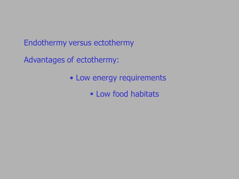 Endothermy versus ectothermy Advantages of ectothermy: Low energy requirements  Low food habitats