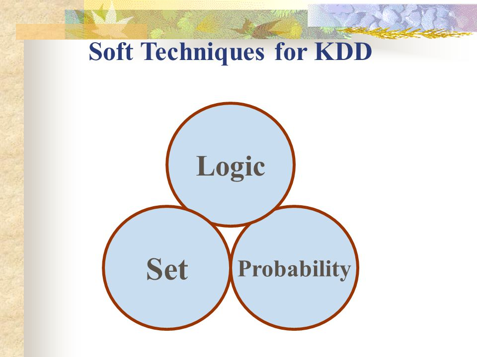 Probability Logic Set Soft Techniques for KDD