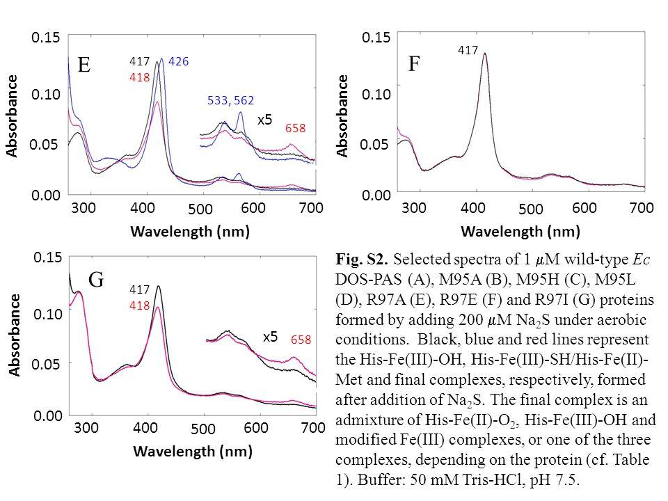 x5 300 600 500 700 400 0.00 0.05 0.10 0.15 Wavelength (nm) Absorbance E 300 600 500 700 400 0.00 0.05 0.10 0.15 Wavelength (nm) Absorbance F G 300 600