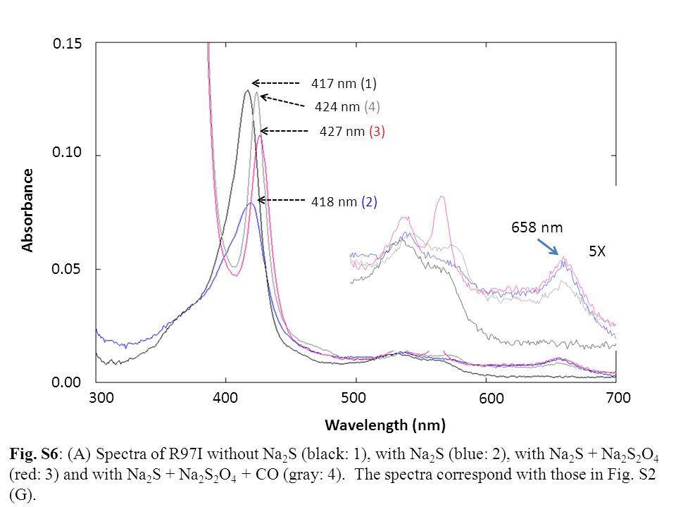 300 600 500 700 400 0.00 0.05 0.10 Wavelength (nm) Absorbance 417 nm (1) 427 nm (3) 418 nm (2) 0.15 424 nm (4) 658 nm 5X Fig. S6: (A) Spectra of R97I